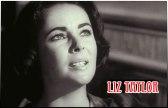 Liz Taylor - Ξαφνικά Πέρυσι το Καλοκαίρι