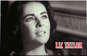 lizTaylor_giphy